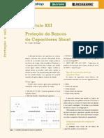 Ed60 Fasc Protecao CapXIII