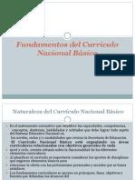 Fundamentos del Currículo Nacional Básico CAPACITACION