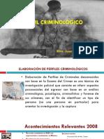 PERFIL CRIMINOLÓGICO UNAM SSP 09