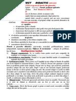 Functii.pt Ixe- b(Gimnaziu)