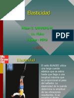 Elasticidad PPT