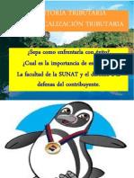 EXPOSICIÓN FISCALIZACIÓN TRIBUTARIA CCPC