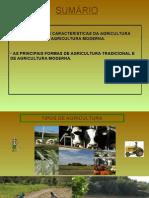 3-caracteristicasdostiposdeagriculturafileminimizer-101205091631-phpapp01