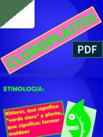 Cloroplastos y Fotosintesis