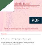 TP 3 Tejidos Dentarios 2012