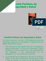 Comité Seg y Salud