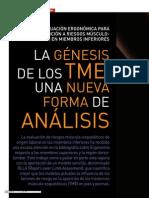 n107 Art2 La Genesis de Los TME