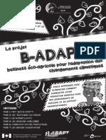 B-ADAPT Comic (v 20 Jan 2014)