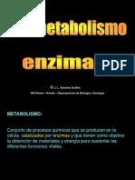 C5_metabolismo