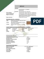 MAPAJO.pdf