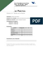 formato_reporte prácticas