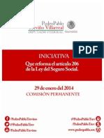 29-01-14 Iniciativa Seguro Social