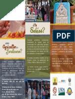 SPANISH Recruitment Brochure - Inside Trifold