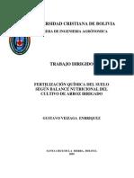 Trabajo Dirigido.pdf