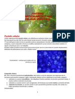 Curs 8 Celula Vegetala