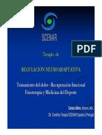 Presentacion Resumida Fisioterapia Scenar Udina
