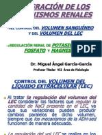 27. Integración de los Mecanismos Renales. Regulación de K, Ca, PO y Mg.ppt