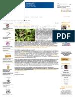 Les maladies oubliées.pdf