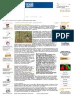 Plantes médicinales _ halte aux biopirates !.pdf