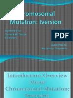Chromosomal Mutation