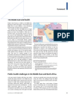 Health Challenges in the Middle East - The Lancet (March 2006)