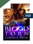 Blood Torn by Lindsay J. Pryor - FREE excerpt