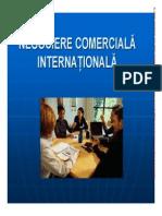 Negociere Comerciala Internationala Chitiba Constanta PDF