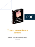 TREINAR OS SENTIDOS E O CÉREBRO - Robert Dehin