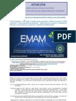 EMAM (ingresos por la web)