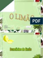 O_limão (1).pps