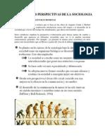 PRINCIPALES PERPECTIVAS de LA SOCIOLOGIA Perspectiva Evolucionista Funcionalista