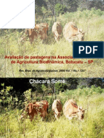 Pastagem_Inverno2003