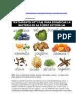 Tratamiento Natural Para Erradicar La Helicobacter Pylori
