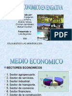 medio economico