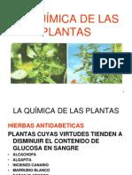 laqumicadelasplantaspresentacin-101026114906-phpapp01
