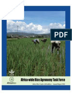 Africa-wide Rice Agronomy Task Force