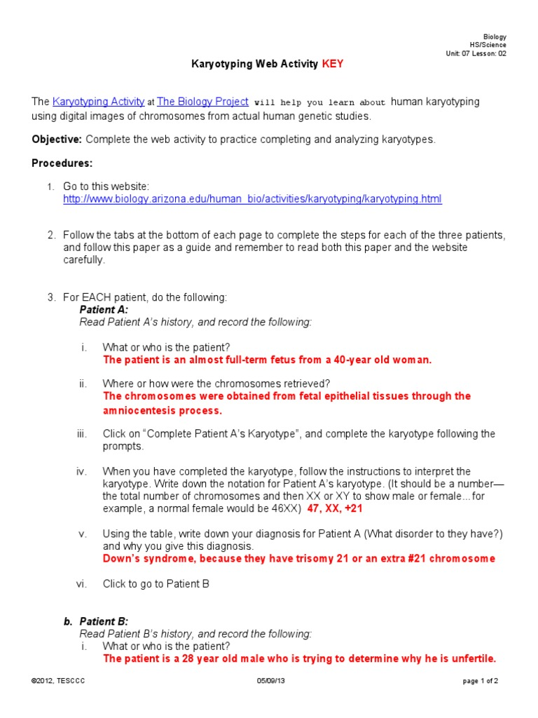 12SBIO0702HKaryotyping Web Activity KEY Karyotype – Karyotyping Activity Worksheet