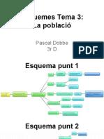 Esquemes T.3 Pascal Dobbe 3r D Geografia