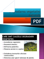 Degradarea Vegetatiei Naturale