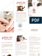 Feline Leukemia Treatment Consumer Brochure