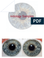 The Integrated Iridology Textbook Pdf