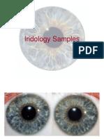 The Integrated Iridology Textbook Pdf