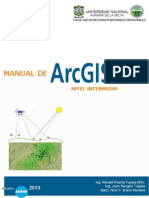 Manual ArcGis Intermedio 10