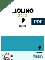 Program Acionm Oli No 2013