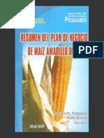 Resumen Plan Negocio Maiz Amarillo Duro PROSAAMER