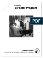 Starting a Foster Care Program