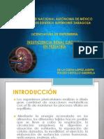 ANATOMOFISIOLOGÍA DEL RIÑON.pdf