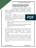 ASPECTOS MORFOLÓGICOS Y ECOLÓGICOS DE LAS ESPECIES DE HEPTAPTERIDAE Y AUCHENIPTERIDAE PRESENTES EN EL MORICHAL NICOLASITO