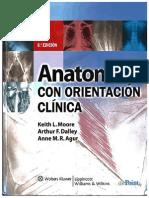 Anatomía con orientación clínica - Moore