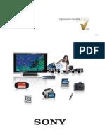Sony de Mexico SA de CV PNC 2006